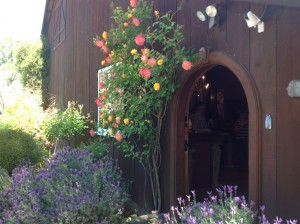 Sierra Wine Country Tours