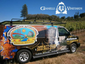 Van at Gianelli Vineyards
