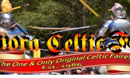Catch a Ride To the Celtic Faire
